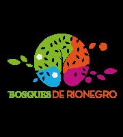 Bosques de Rionegro Medellín Constructora Bolívar